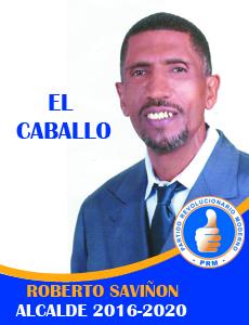 EL CABALLO BANNER